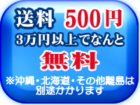 送料なんと200円